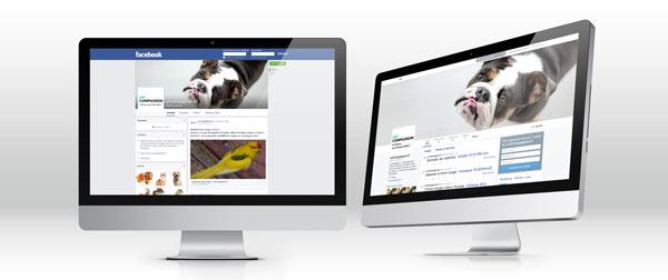 Les annonces du site unCompagnon.fr sont automatiquement diffusées sur Facebook et Twitter.